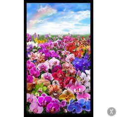 Digital Gardens Orchid Scene Panel Fabric - Black