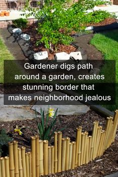 Beautify your garden by adding these gorgeous borders! #gardening