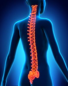Which 4 emerging trends will drive the global spine surgery market? - http://www.orthospinenews.com/which-4-emerging-trends-will-drive-the-global-spine-surgery-market/
