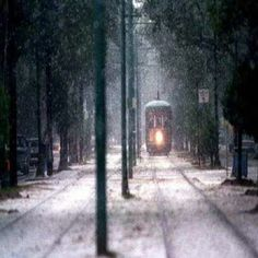 St.Charles street car ,New Orleans