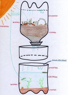 Ecosistema in bottiglia - tutorial
