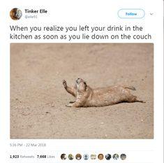 17 Animal Tweets That Made Us Laugh Last Week