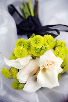 callas and button mums