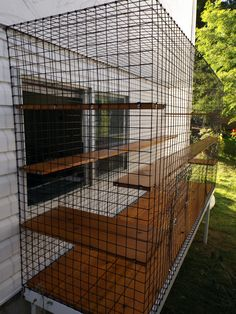 17 Best images about Cat enclosures (for other animals too) from Catscape (Beautiful World . Small Bird Cage, Outdoor Cat Enclosure, Cat Cages, Cat Run, Dog Cat, Chinchilla Pet, Cat Condo, Outdoor Cats, Living Environment