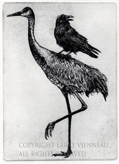 """Aesop's Fable Series. """"THE CROW AND CRANE"""" ETCHING 2014, By Larry Vienneau Raven artwork  Raven crow  black bird Sandhill by RAVENSTAMPS"""