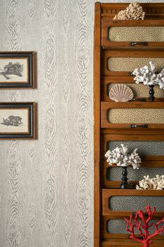 Woodgrain Wallpaper by Cole & Son - Curio Collection - Lime Lace Free Wallpaper Samples, Cole And Son Wallpaper, Focal Wall, New Shop, Designer Wallpaper, Wood Grain, New Homes, Neutral Wallpaper, Collection