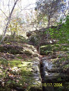 Giant City Southern Illinois  lots for hiking trails and cool rock formations