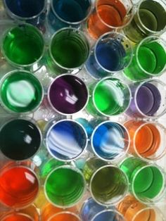 Steve Spangler's Splash of Color Science Activity (Can You Make 24 Colours with just Red, Blue and Yellow?)
