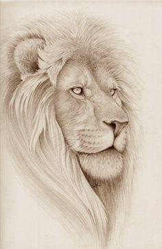 Image result for lion of judah clipart