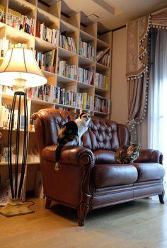 猫と暮らすおうちのリノベ その1 | 名古屋・一宮のスペースプランニング【PA★DU-DUE】のブログ