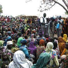 Les attaques de Boko Haram déclenchent une crise de l'éducation au Cameroun :: CAMEROON