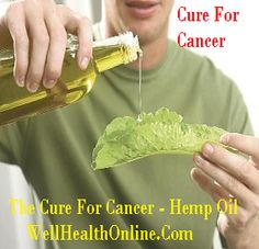 The Cure For Cancer - Hemp Oil #cancer #hempoil