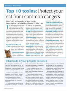 Common cat toxins. Always call the Pet Poison Helpline (800) 213-6680 or your vet immediately. - dvm360