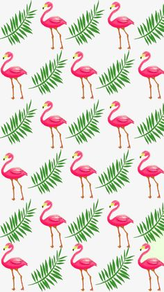 Image about pink in wallpaper iphone by ️️paula duarte s. Computer Wallpaper, Pattern Wallpaper, Wallpaper Backgrounds, Iphone Wallpaper, Flamingo Wallpaper, Flamingo Pattern, Cartoon Background, Cute Wallpapers, Aesthetic Wallpapers