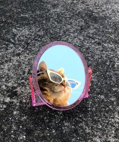 Cats With Brain Freeze Animals And Pets, Baby Animals, Funny Animals, Cute Animals, Gatos Cool, Illustration Photo, Cat Sunglasses, Cat Aesthetic, Cat Wallpaper