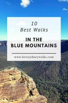 The Blue Mountains region is home to countless beautiful hiking tracks, lookouts and waterfalls. We have selected 10 of the best Blue Mountains walks. Australia Photos, Visit Australia, Australia Travel, Brisbane, Melbourne, Mountain Waterfall, Blue Mountain, Cairns, Family Trips