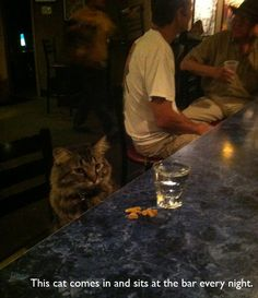 What on Earth was Minerva McGonagall doing in a muggle bar?