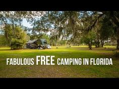 Fabulous Free #Camping In #Florida...read on for where to find it yourself!   Gone with the Wynns #rv #rving #travel