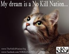 My dream is a No Kill Nation - Wear Your Heart On Your Sleeve... or Chest... or... Shop Our Online Store to Help Save Lives