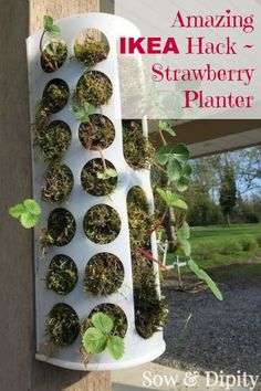 Clever Ikea Hack ~ use this shopping bag holder as a vertical strawberry planter ~ genius!