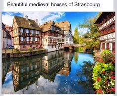Strasbourg, France--where my great great grandmother, Olivia (my daughter is named after her), was from. I have to go here.