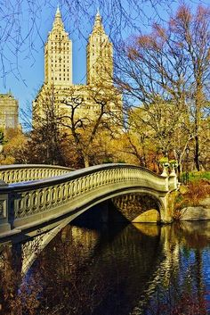 Puente Arco en Central Park, New York. Bow Bridge, Central Park, New York City. Places Around The World, Oh The Places You'll Go, Places To Travel, Places To Visit, Around The Worlds, Central Park, New York City, A New York Minute, Beau Site