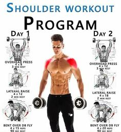 SHOULDER WORKOUT PROGRAM GUIDE ✅ Your Shoulder Muscles Ok, so we can't start to build up the muscles in your shoulders without knowing what muscles make up your shoulders Put simply, the shoulder is made up of two groups of muscles extrinsic mu - # Fitness Workouts, Weight Training Workouts, Fitness Routines, Fitness Tips, Fitness Motivation, Video Fitness, Health Fitness, Training Plan, Fitness Quotes