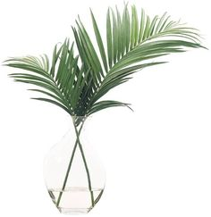 "Search Results for ""ndi palm leaves odd glass bubble – domino Green Home Decor, Easy Home Decor, Beach Cottage Style, Home And Deco, Minimalist Decor, The Ranch, Modern House Design, Decoration, Indoor Plants"