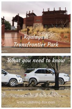 What you need to know about the Kgalagadi Transfrontier Park. #nationalpark #SouthAfrica #Botswana #SANPARKS #SouthAfricanNationalPark #tips #advice #information #importantinformation #accommodation #water #catering #camping #driving #roadconditions National Parks Map, National Park Posters, Augrabies Falls, Amazing Destinations, Travel Destinations, Africa Travel, Travel Around The World, Need To Know, South Africa