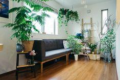 グリーンで最高のもてなしを演出する藍さんのリビング|インテリア実例 インテリア 生活 暮らし 雑貨 小物 家具 ソファ クッション テーブル イス グリーン 観葉植物 照明 間接照明 リビング Green Rooms, Flower Of Life, Green Flowers, Room Interior, Indoor Plants, Interior Decorating, Couch, Furniture, Home Decor