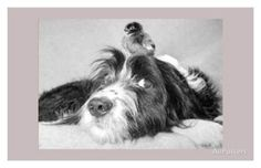 What Are You Looking At? Kunst bei AllPosters.de