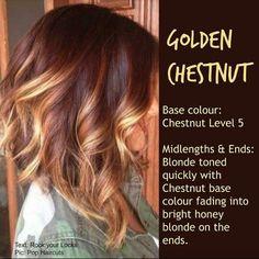 Golden Chesnut Medium Hair Cuts, Medium Hair Styles, Curly Hair Styles, Chestnut Hair, Brown Blonde Hair, Blonde Honey, Blonde High, Honey Hair, Hair Color And Cut