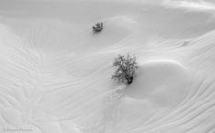 Dune de neige by Patrick Pichard on 500px