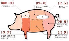 豚の部位 Thing 1, Japan Art, Japanese Language, Wine And Spirits, Japan Travel, Japanese Food, Trivia, Food Art, Carne