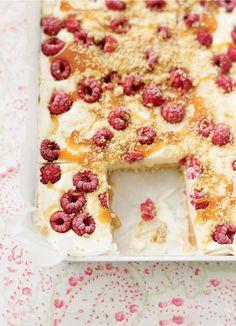A wonderfully easy ice cream dessert recipe with raspberries and dulche de leche.