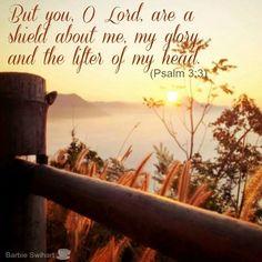 Psalm 3:3 www.celebrateyourfaith.com