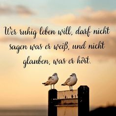 - - Source by tiefe_inst Job Quotes, True Quotes, Best Quotes, Funny Quotes, Cool Words, Wise Words, German Quotes, German Words, Positive Inspiration