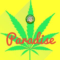 You Tried, Weed, Paradise, Mom, Feelings, Life, Products, Marijuana Plants, Mothers