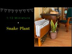 1:12 Miniature Snake Plant (FREE Printable) - YouTube Miniature Plants, Miniature Rooms, Diy Doll Miniatures, Clock Shop, Mini Plants, Snake Plant, Diy Dollhouse, Fun Projects, 3d Printer