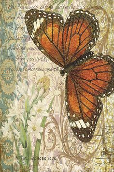 Featured Art - Butterfly Kisses-D by Jean Plout Decoupage Vintage, Decoupage Paper, Vintage Paper, Butterfly Kisses, Butterfly Art, Orange Butterfly, Vintage Pictures, Vintage Images, Vintage Butterfly
