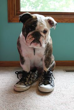 """""""I STILL don't fit in these shoes!"""""""