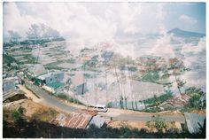 làng hoa Thái Phiên, Đà Lạt, Việt Nam