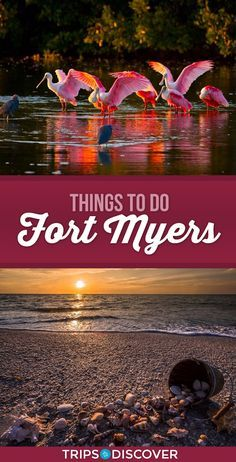 11 Best Things To Do In Fort Myers Florida With Images Fort