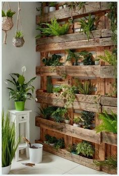 If you are looking for Diy Projects Pallet Garden Design Ideas, You come to the right place. Below are the Diy Projects Pallet Garden Design Ideas. House Plants Decor, Plant Decor, Wall Of Plants, Hanging Plants, Plant Art, Plantas Indoor, Building A Fence, Walled Garden, Concrete Pots