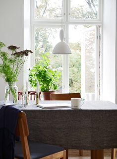 Warm - and green - diningspace.