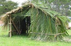 History of the Mangatowai and Waimahana communities in the Far North - whare nikau Nests, Sustainability, Community, Horses, History, Animals, Animales, Animaux, Historia