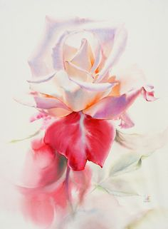 129 best watercolor without drawing rose by lafe images on watercolor without drawing by lafe mightylinksfo