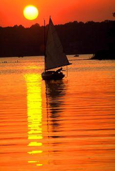 ✭ Catboat on the Chesapeake Bay at sunset