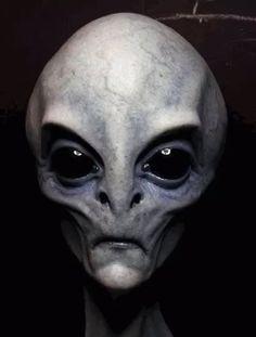 Alien Gris, Grey Alien, Les Aliens, Aliens And Ufos, Ancient Aliens, Ancient History, European History, American History, Alien Tattoo