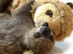 Sloth friends foreverrr